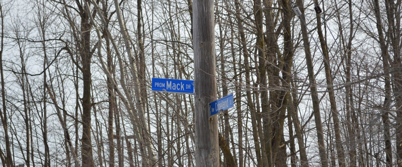 Mack Drive street sign in front of forest
