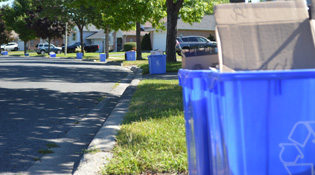 Recycling bins line a curving street in the summer