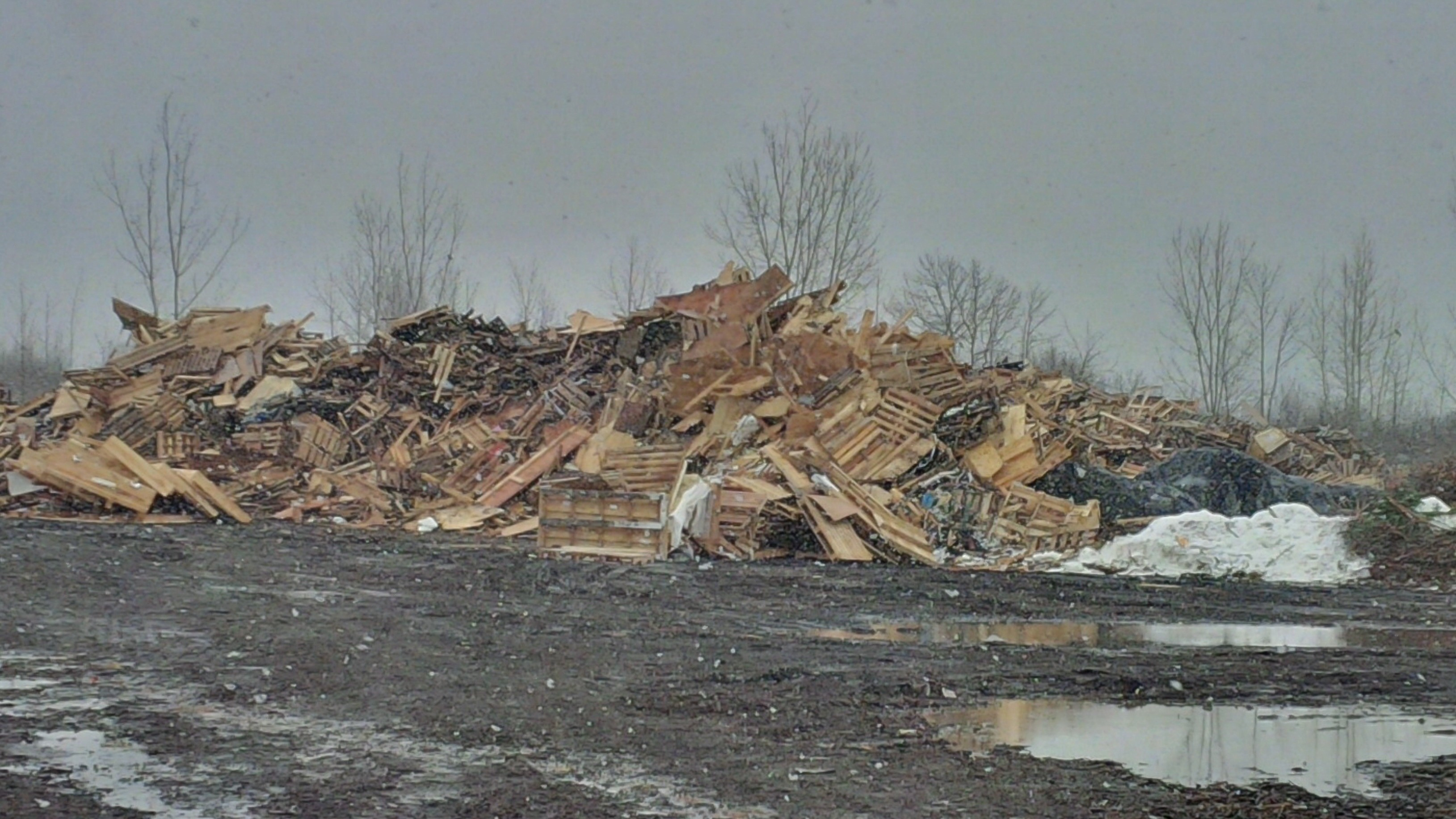 Pile of wood recycling at Cornwall landfill