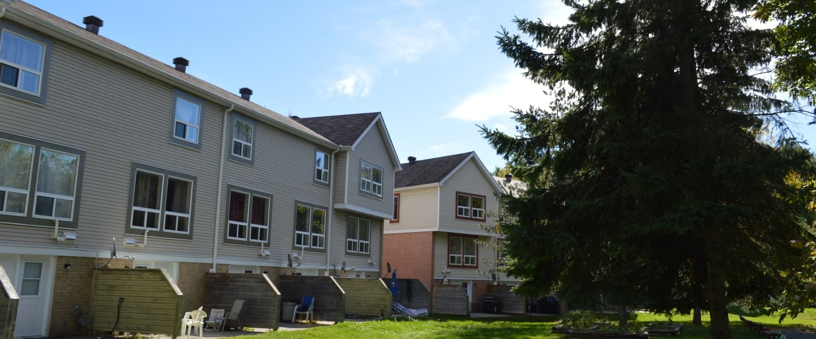 Cornwall Social housing units next to large evergreen tree