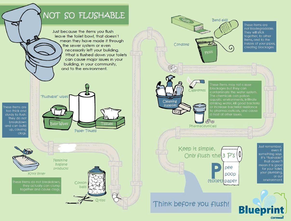 Infographic of not flushable items