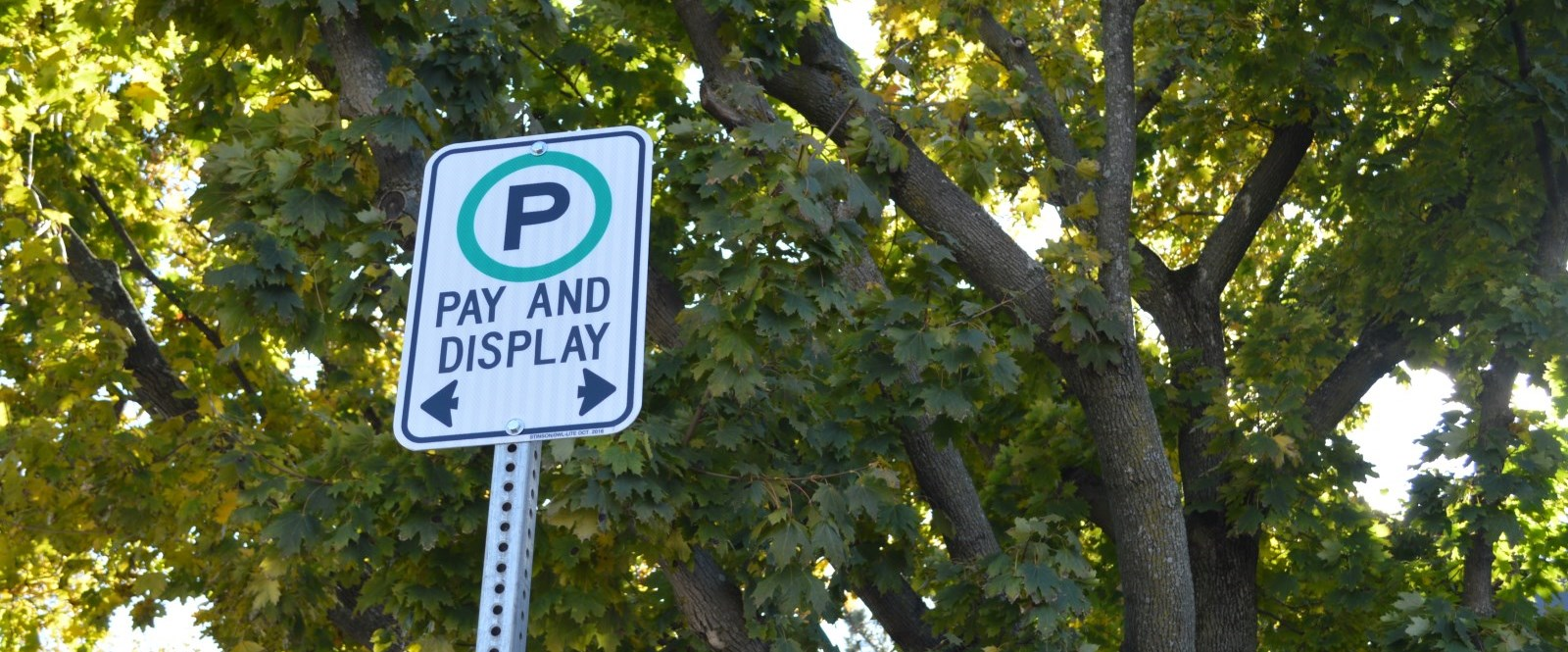 Pay and display sign in front of City Hall and a green tree