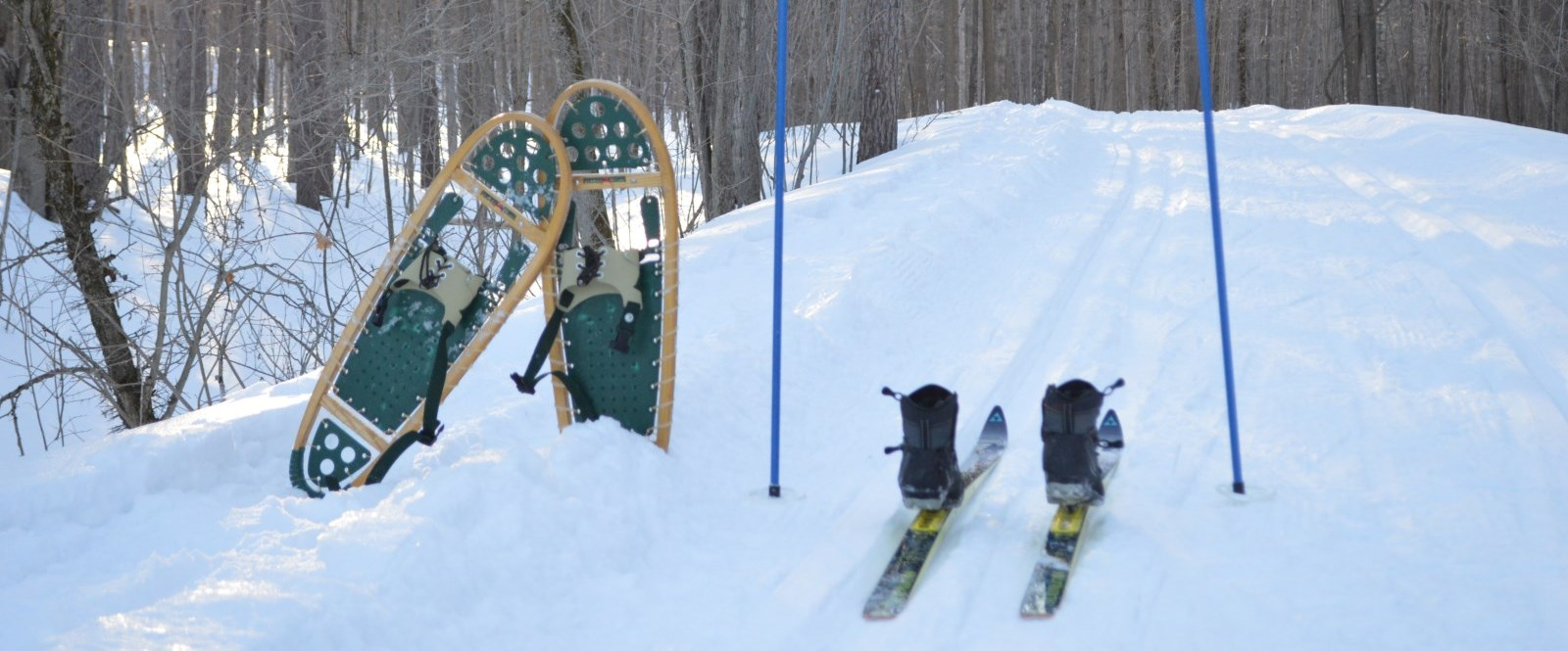snowshoes and cross country skis on snowy trail in guindon park